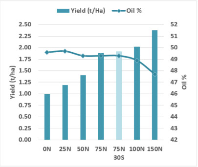 Yield and oil responses to applied nitrogen and sulphur in ATR Stingray at Sherwood SA, 2017
